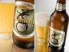 Cerveza Iguana